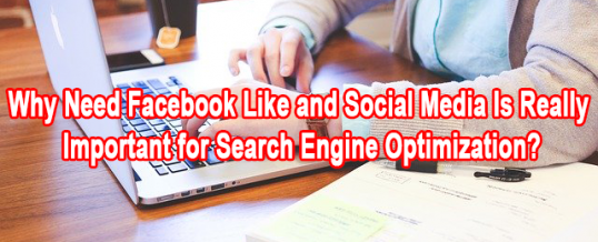 Why Need Facebook Like and Social Media Is Really Important for Search Engine Optimization?