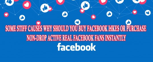Some Stiff Causes Why Should You Buy Facebook Likes or Purchase Non-drop Active Real Facebook Fans Instantly